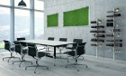 Sala-riunioni--lichene-e--B&W